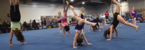 Youngstown's Premier Gymnastics Program